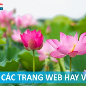 Top 10 website tử vi tại Việt Nam