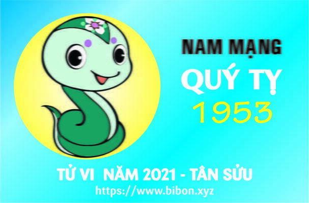 TỬ VI NĂM 2021 TUỔI QUÝ TỴ 1953 NAM MẠNG