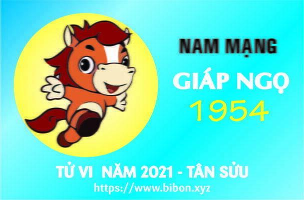 TỬ VI NĂM 2021 TUỔI GIÁP NGỌ 1954 NAM MẠNG