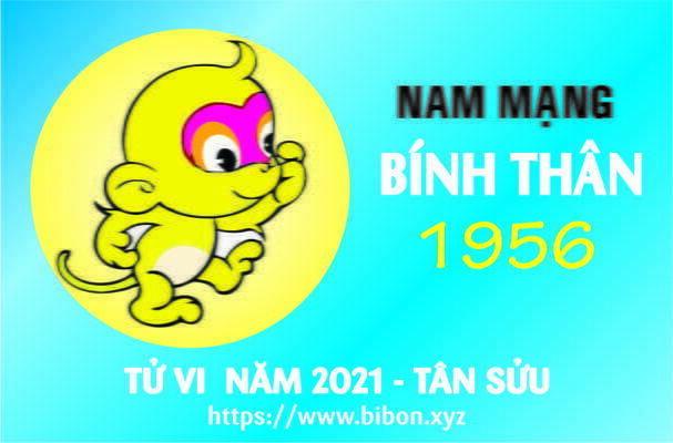 TỬ VI NĂM 2021 TUỔI BÍNH THÂN 1956 NAM MẠNG