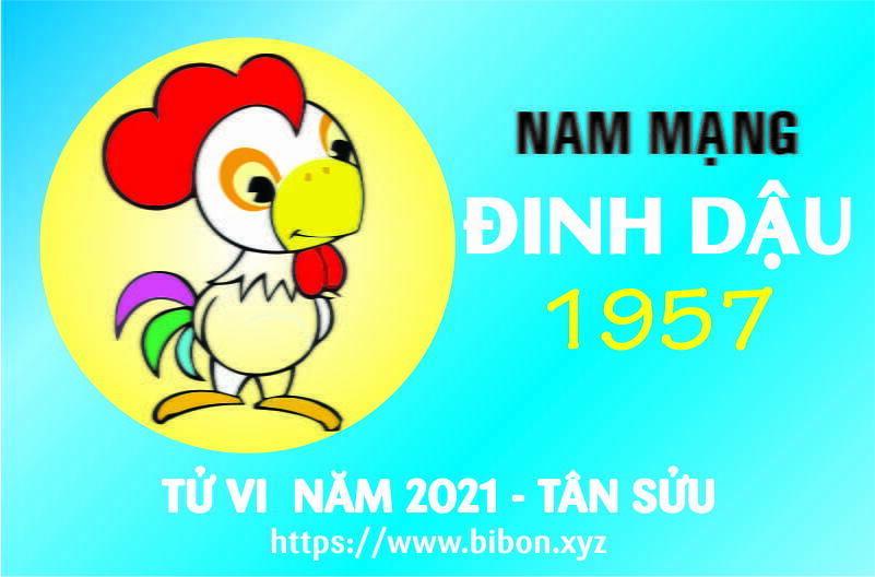 TỬ VI NĂM 2021 TUỔI ĐINH DẬU 1957 NAM MẠNG
