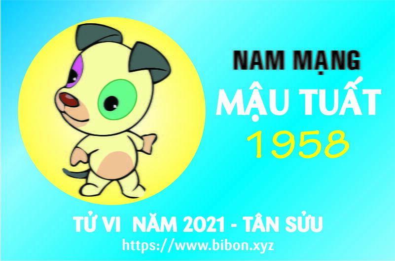 TỬ VI NĂM 2021 TUỔI MẬU TUẤT 1958 NAM MẠNG