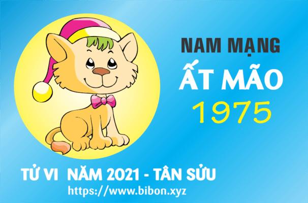TỬ VI NĂM 2021 TUỔI ẤT MÃO 1975 NAM MẠNG