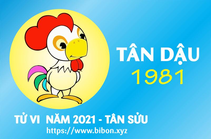 TỬ VI NĂM 2021 TUỔI TÂN DẬU 1981 NAM MẠNG