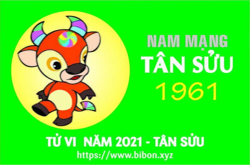 TỬ VI NĂM 2021 TUỔI TÂN SỬU 1961 NAM MẠNG