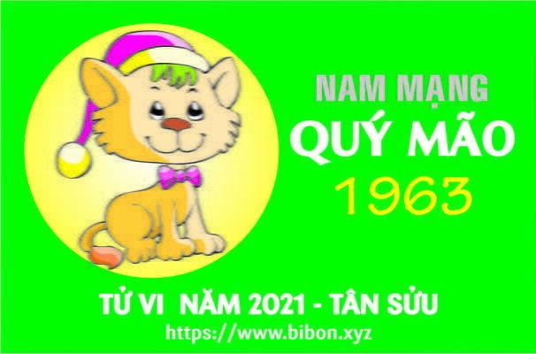 TỬ VI NĂM 2021 TUỔI QUÝ MÃO 1963 NAM MẠNG