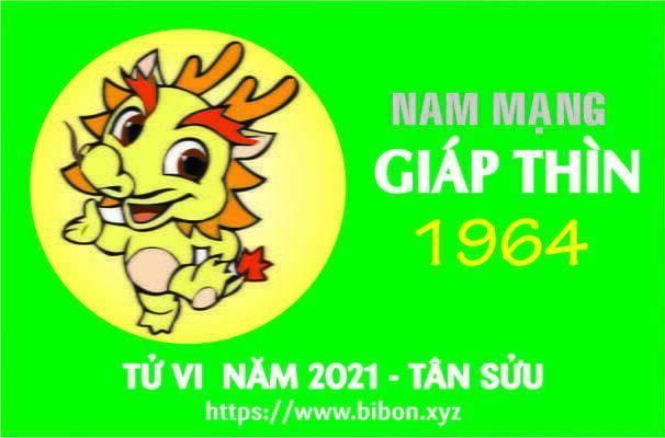 TỬ VI NĂM 2021 TUỔI GIÁP THÌN 1964 NAM MẠNG