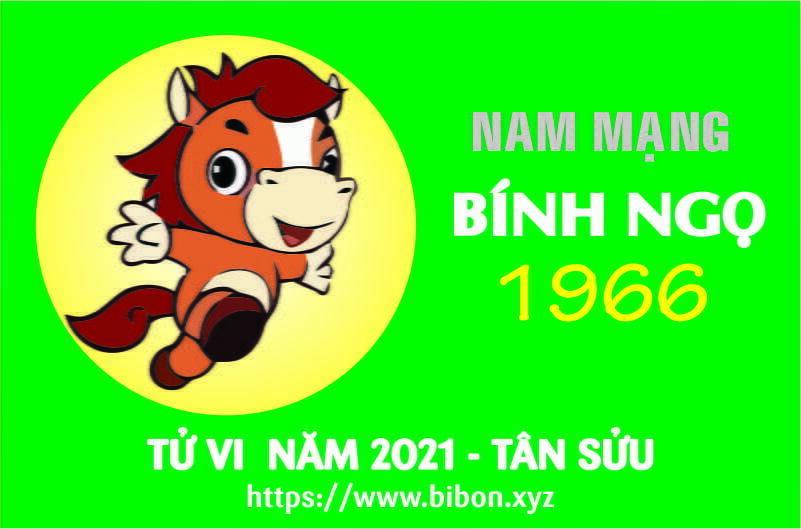TỬ VI NĂM 2021 TUỔI BÍNH NGỌ 1966 NAM MẠNG