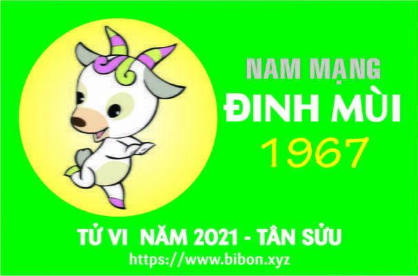TỬ VI NĂM 2021 TUỔI ĐINH MÙI 1967 NAM MẠNG