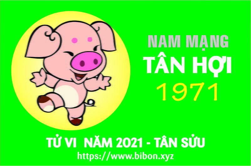 TỬ VI NĂM 2021 TUỔI TÂN HỢI 1971 NAM MẠNG