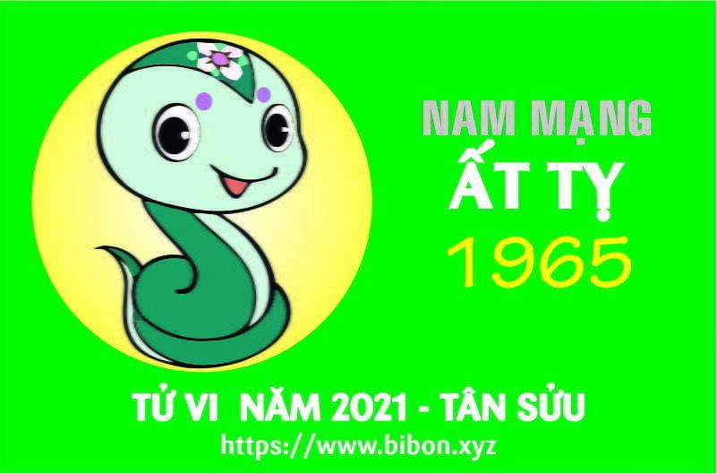 TỬ VI NĂM 2021 TUỔI ẤT TỴ 1965 NAM MẠNG