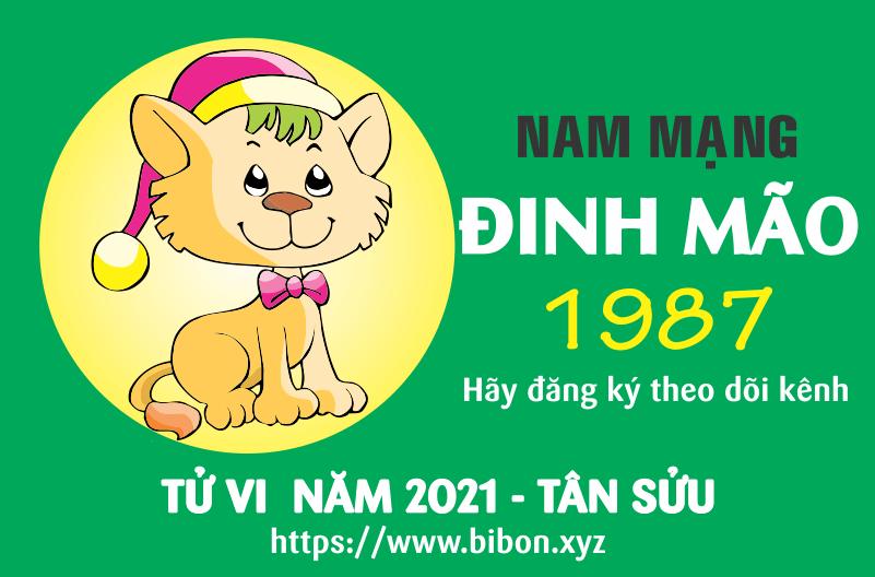 TỬ VI NĂM 2021 TUỔI ĐINH MÃO 1987