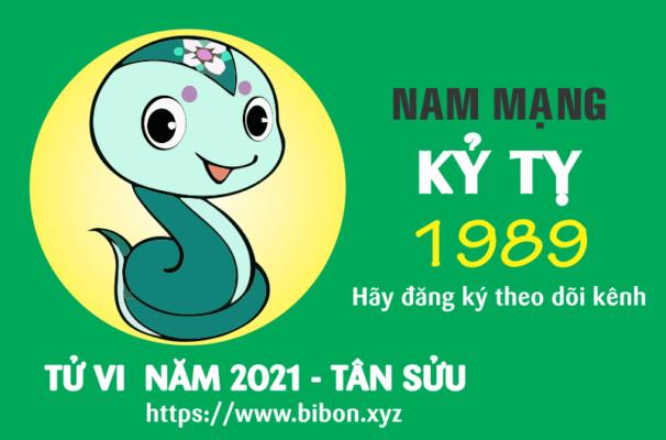 TỬ VI NĂM 2021 TUỔI KỶ TỴ 1989 NAM MẠNG
