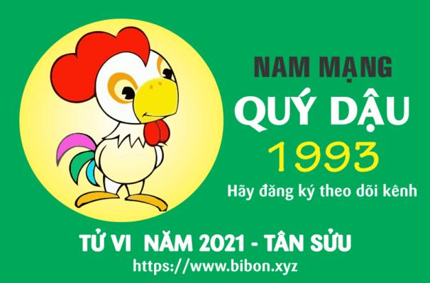 TỬ VI NĂM 2021 TUỔI QUÝ DẬU 1993 NAM MẠNG