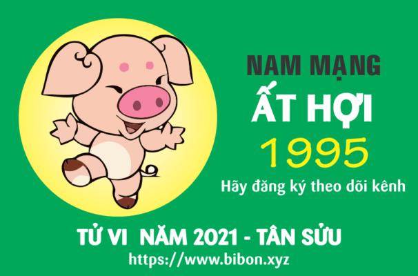 TỬ VI NĂM 2021 TUỔI ẤT HỢI 1995 NAM MẠNG