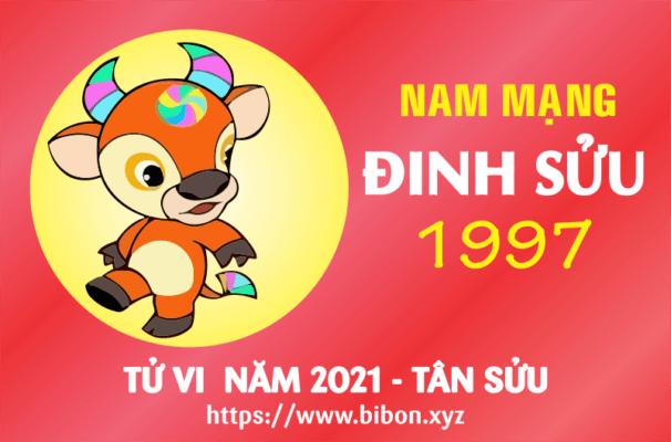 TỬ VI NĂM 2021 TUỔI ĐINH SỬU 1997 NAM MẠNG