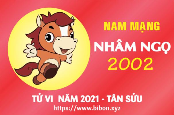 TỬ VI NĂM 2021 TUỔI NHÂM NGỌ 2002 NAM MẠNG