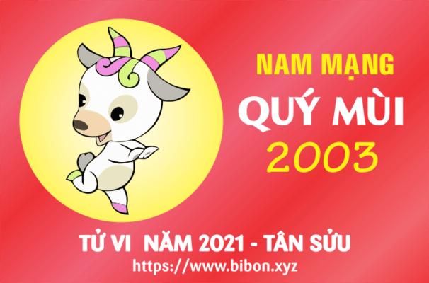 TỬ VI NĂM 2021 TUỔI QUÝ MÙI 2003 NAM MẠNG
