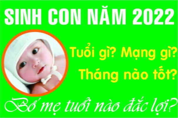 SINH CON NĂM 2022